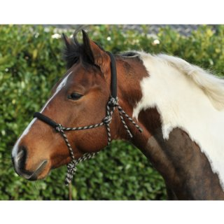 Knotenhalfter gepolstert Pony