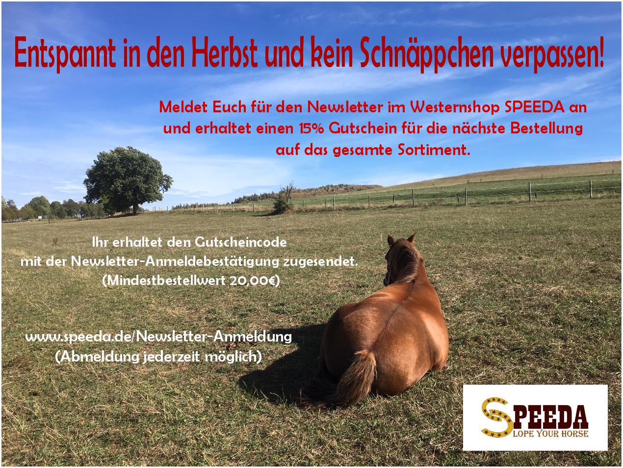 Newsletter Anmeldung Westernshop SPEEDA